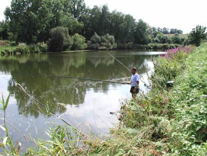 AAPPMA de l'Ille et Vilaine (35) : Meilleurs parcours de pêche dans l'Ille-et-Vilaine Vilaine-1-851f57