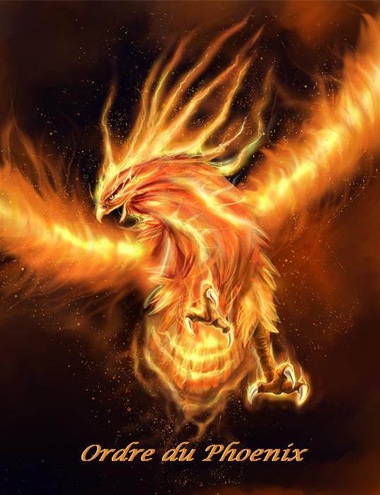 Ordre du Phoenix Index du Forum