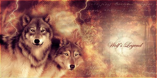 gallerie de puce Wolfslegend-1307c80