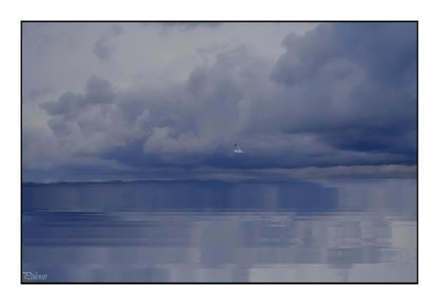 Je me suis mis a la peinture Bruit-2-1905622
