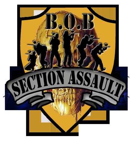 Team Bob section assault Bob-section-assault-7c8085